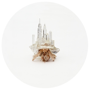 Hermit Crab NYC