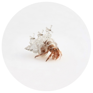 Hermit Crab windmill