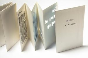 Indigo a fiction 2