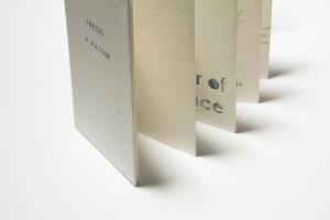 Indigo a fiction 3