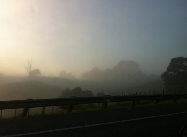 Welcome to the Waikato